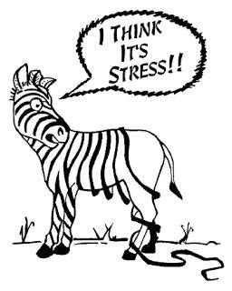 School stress essay busters - virtualgpcz